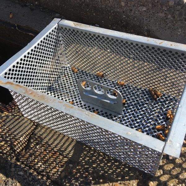 filter for storm drains